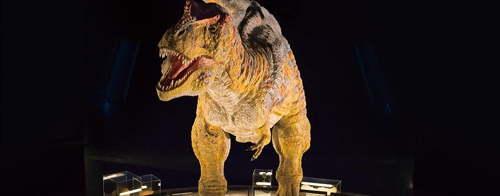 日本海に面した北陸の地・福井県 恐竜博物館