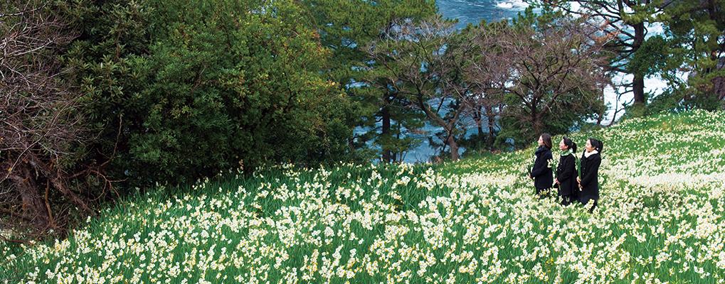 日本海に面した北陸の地・福井県