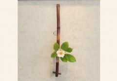 花びいどろ「すす竹」